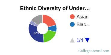 New Jersey Institute of Technology Student Ethnic Diversity Statistics