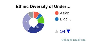 The New School Student Ethnic Diversity Statistics