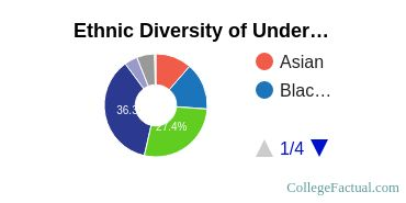 The University of Texas at Arlington Student Ethnic Diversity Statistics