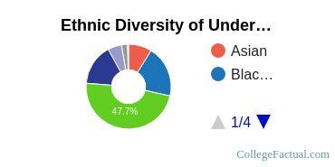 University of Houston - Downtown Student Ethnic Diversity Statistics