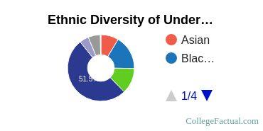 University of New Orleans Student Ethnic Diversity Statistics
