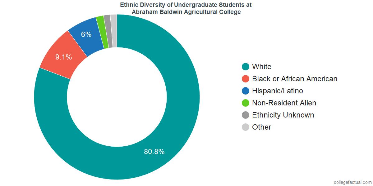 Ethnic Diversity of Undergraduates at Abraham Baldwin Agricultural College