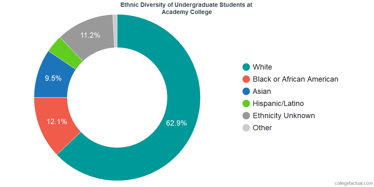 Ethnic Diversity of Undergraduates at Academy College