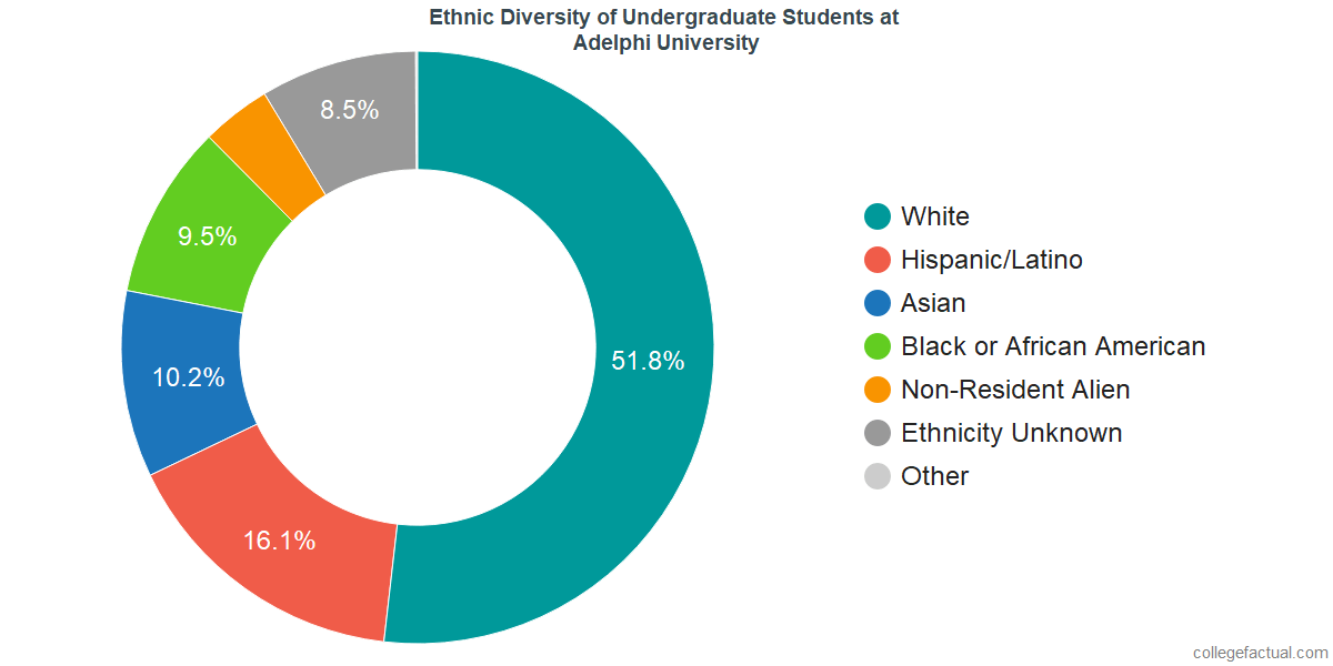 Undergraduate Ethnic Diversity at Adelphi University