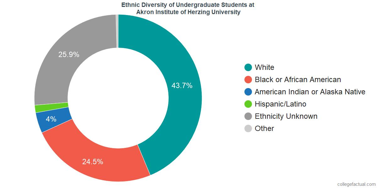 Ethnic Diversity of Undergraduates at Akron Institute of Herzing University