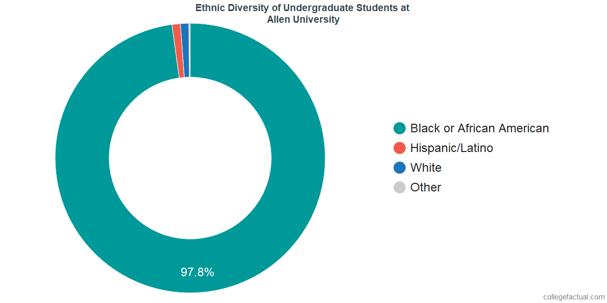 Ethnic Diversity of Undergraduates at Allen University
