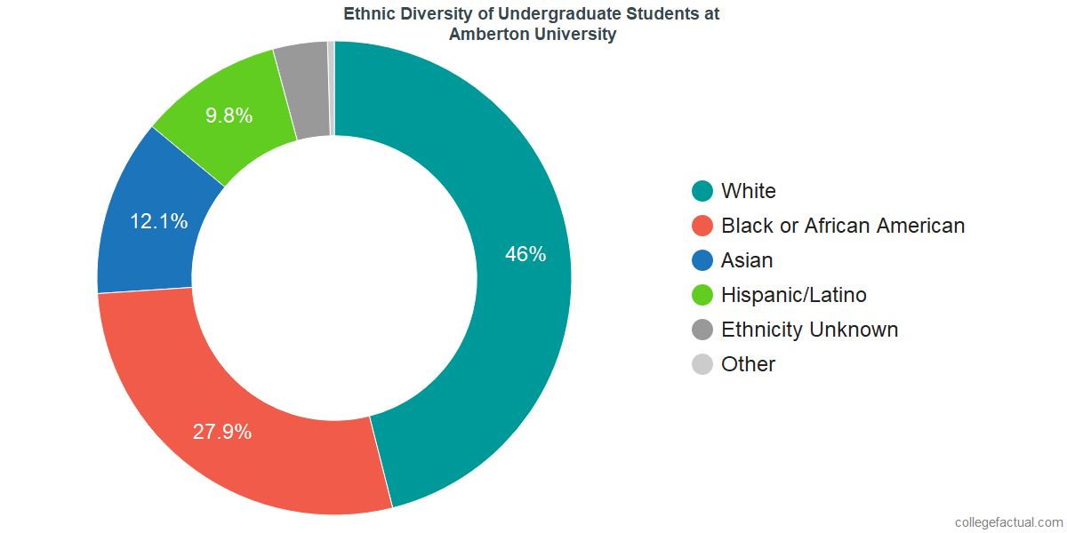 Ethnic Diversity of Undergraduates at Amberton University