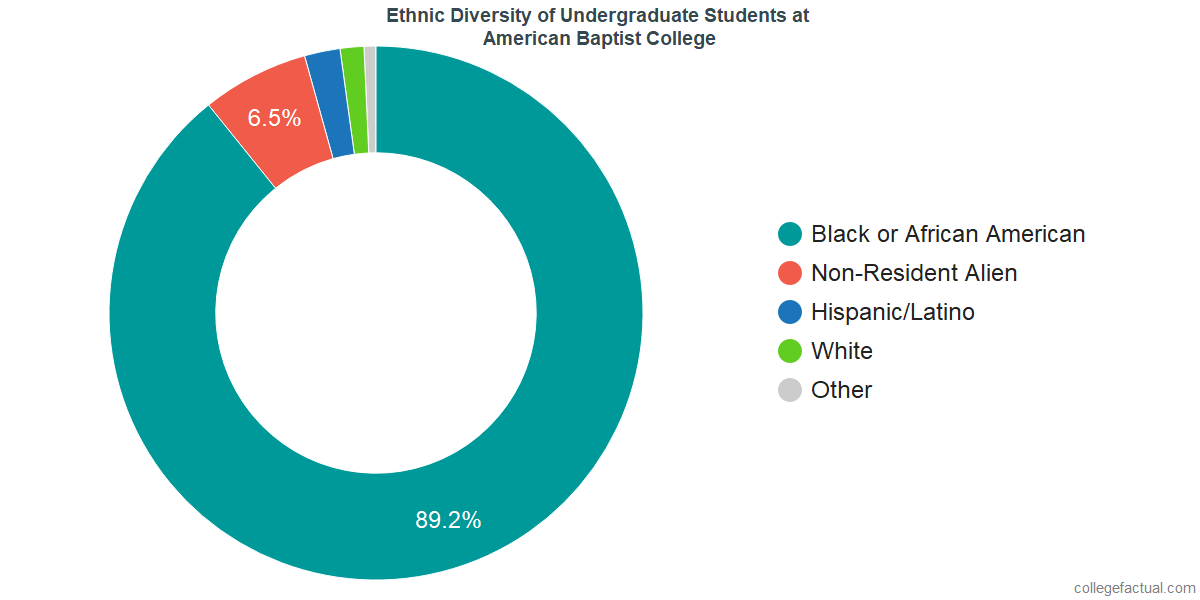 Ethnic Diversity of Undergraduates at American Baptist College