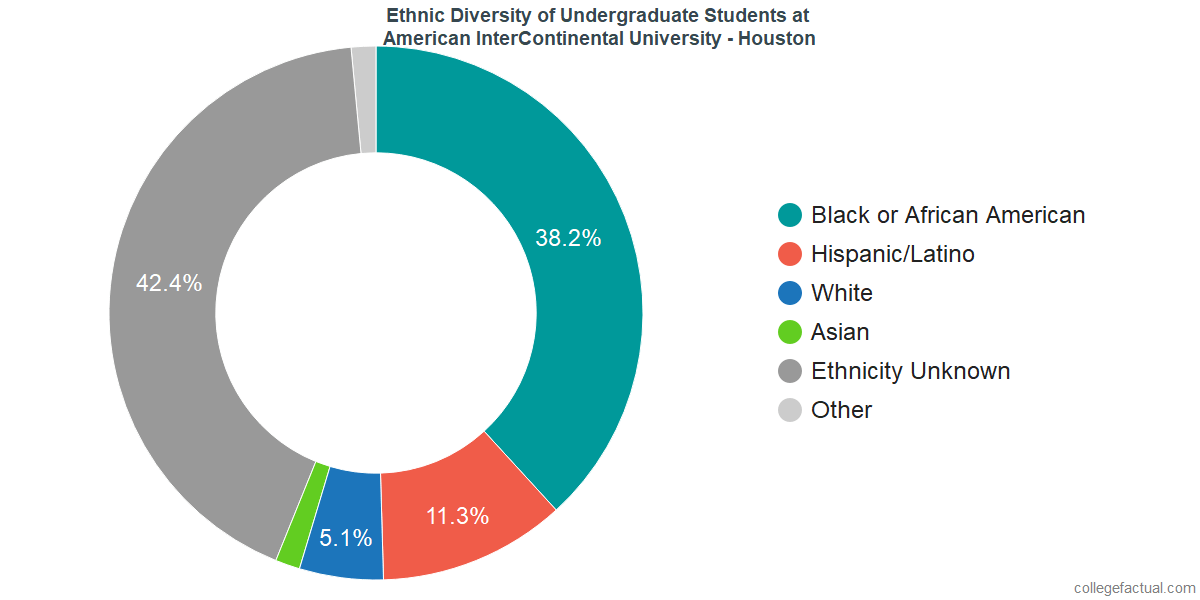 Undergraduate Ethnic Diversity at American InterContinental University - Houston