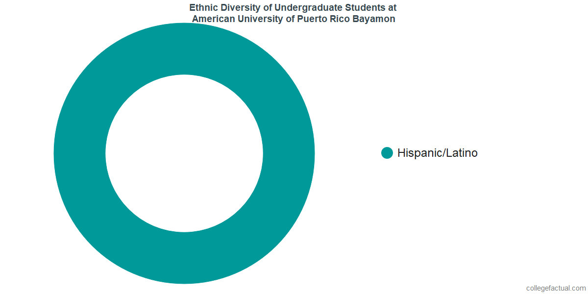 Ethnic Diversity of Undergraduates at American University of Puerto Rico Bayamon