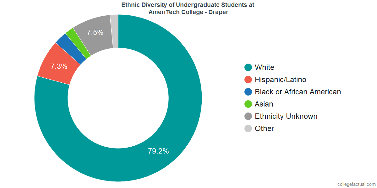 Ethnic Diversity of Undergraduates at AmeriTech College - Draper
