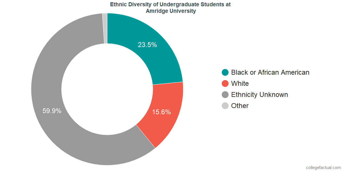 Ethnic Diversity of Undergraduates at Amridge University