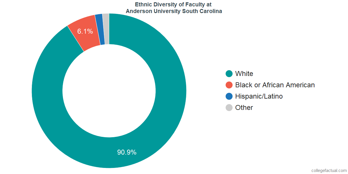 Ethnic Diversity of Faculty at Anderson University South Carolina