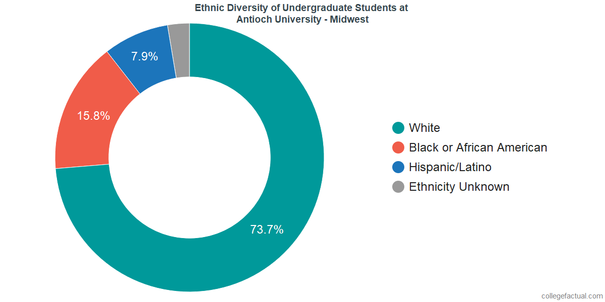 Ethnic Diversity of Undergraduates at Antioch University - Midwest