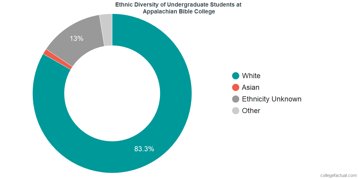 Ethnic Diversity of Undergraduates at Appalachian Bible College