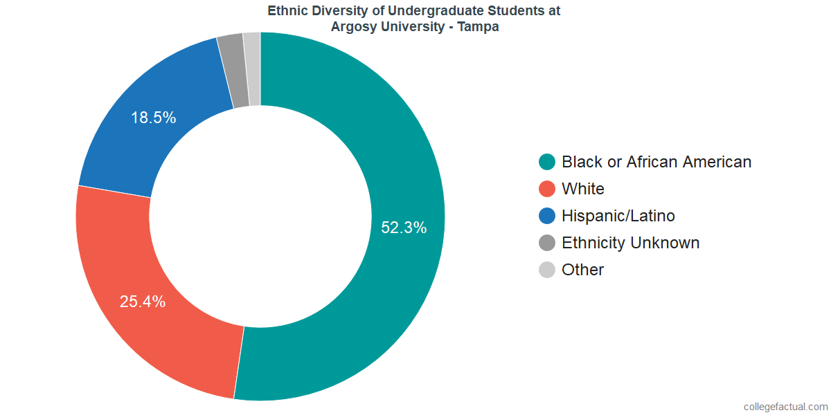 Ethnic Diversity of Undergraduates at Argosy University - Tampa