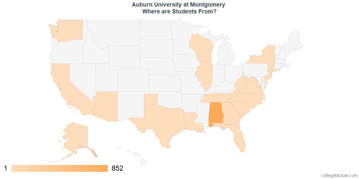 Undergraduate Geographic Diversity at Auburn University at Montgomery