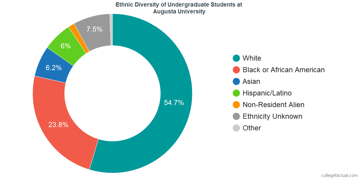Ethnic Diversity of Undergraduates at Augusta University