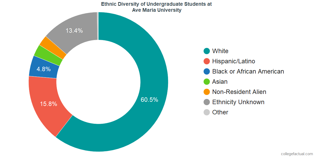 Ethnic Diversity of Undergraduates at Ave Maria University
