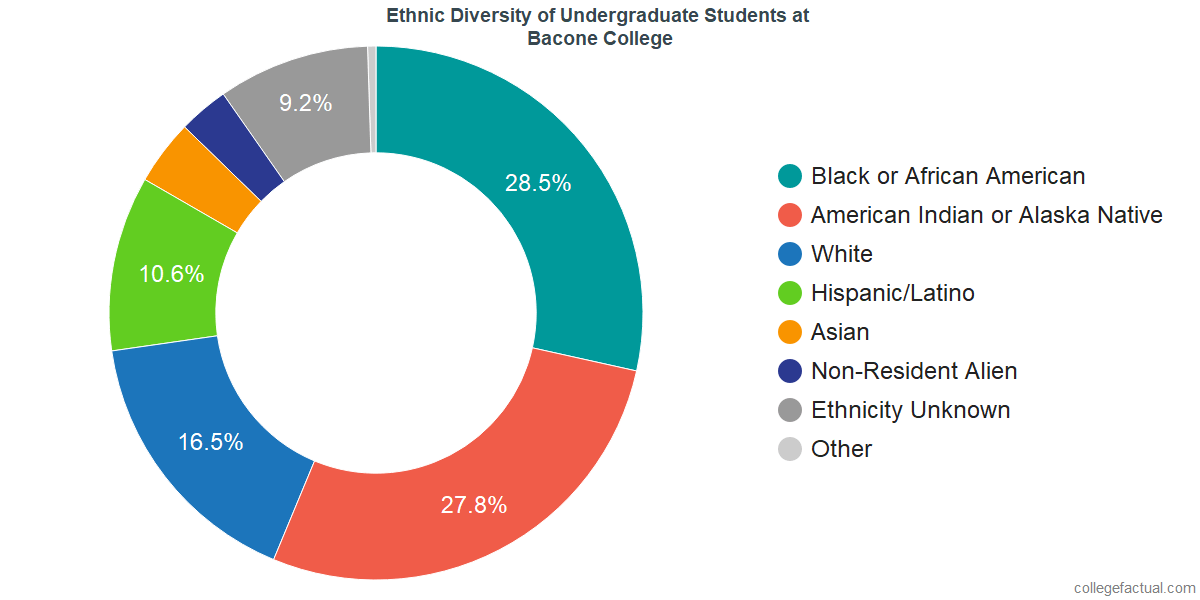 Undergraduate Ethnic Diversity at Bacone College