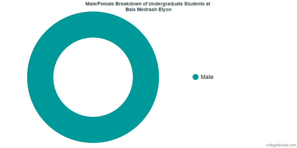 Male/Female Diversity of Undergraduates at Bais Medrash Elyon