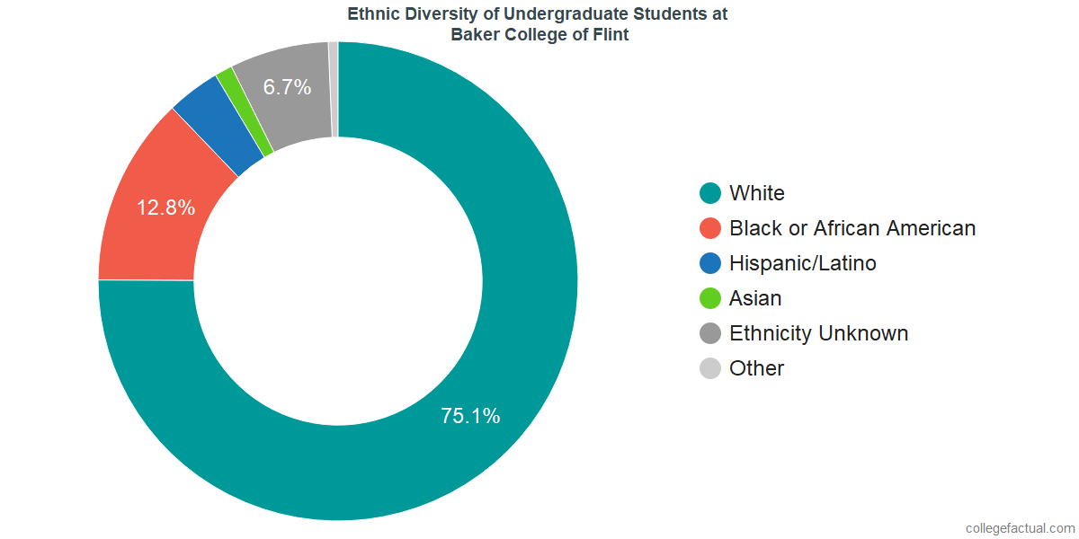 Ethnic Diversity of Undergraduates at Baker College of Flint