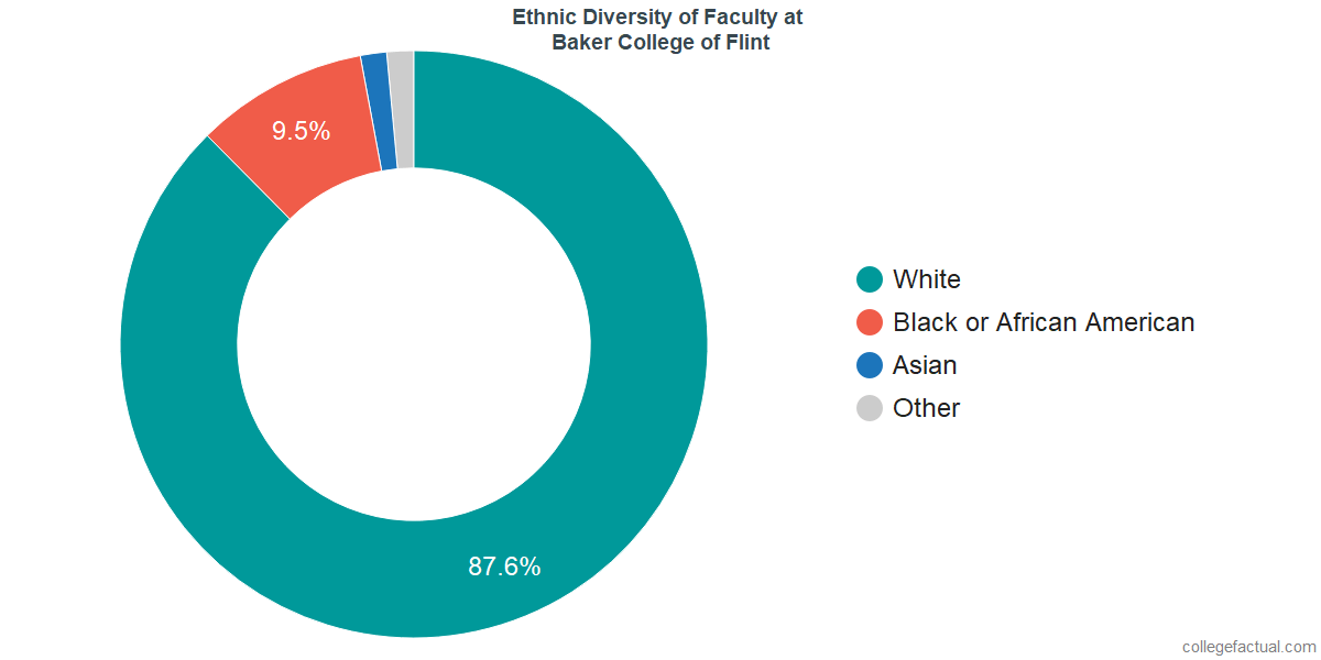 Ethnic Diversity of Faculty at Baker College of Flint