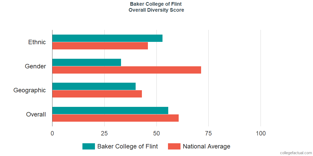 Overall Diversity at Baker College of Flint