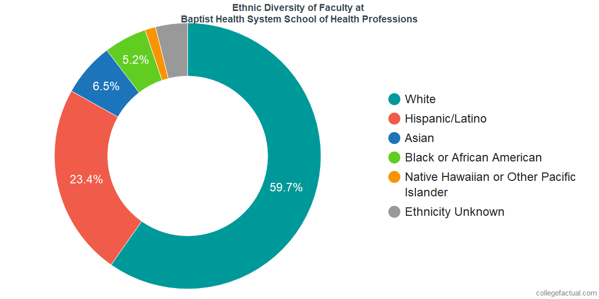 Ethnic Diversity of Faculty at Baptist Health System School of Health Professions