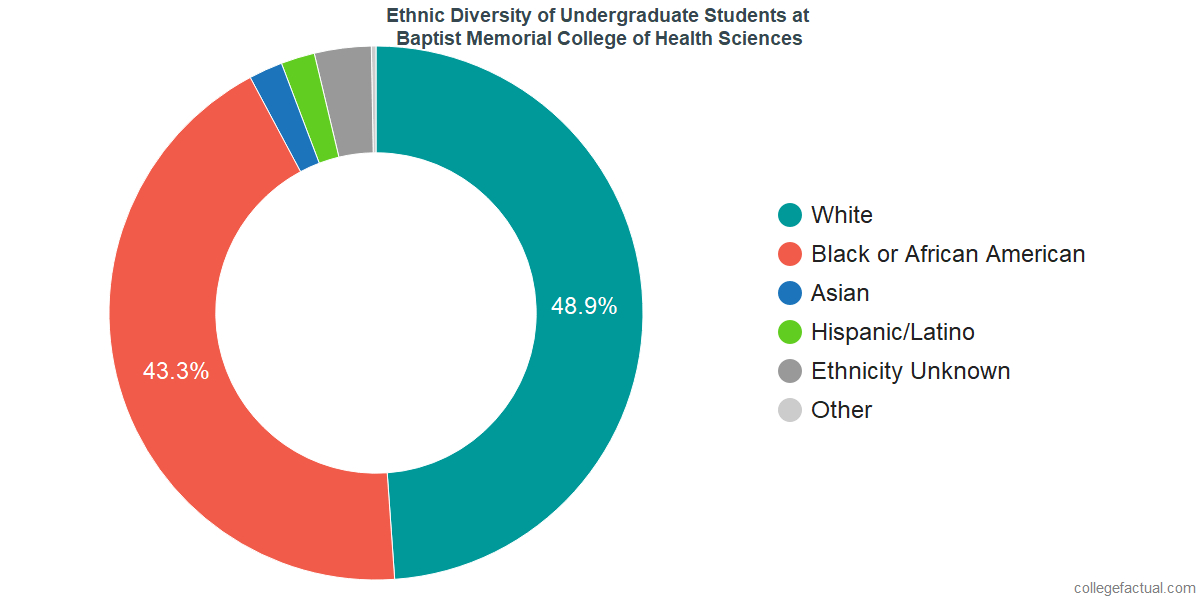 Ethnic Diversity of Undergraduates at Baptist Memorial College of Health Sciences