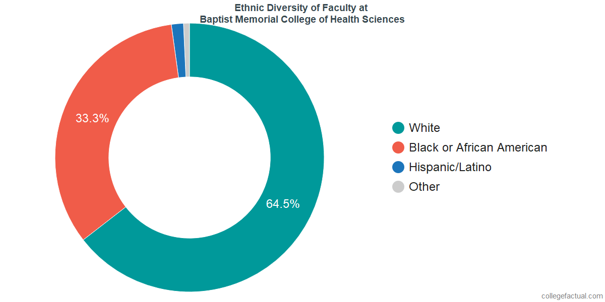 Ethnic Diversity of Faculty at Baptist Memorial College of Health Sciences