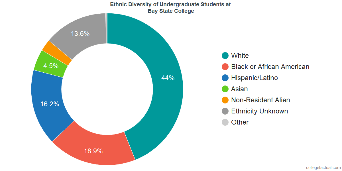 Ethnic Diversity of Undergraduates at Bay State College