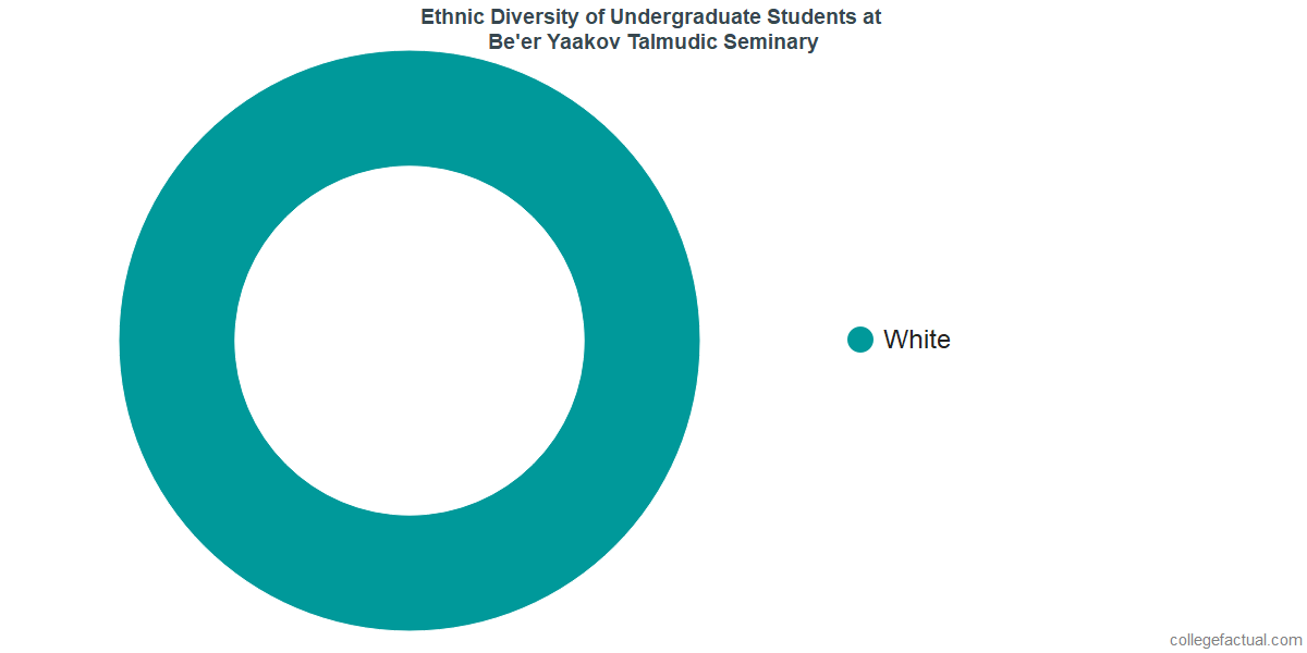 Ethnic Diversity of Undergraduates at Be'er Yaakov Talmudic Seminary