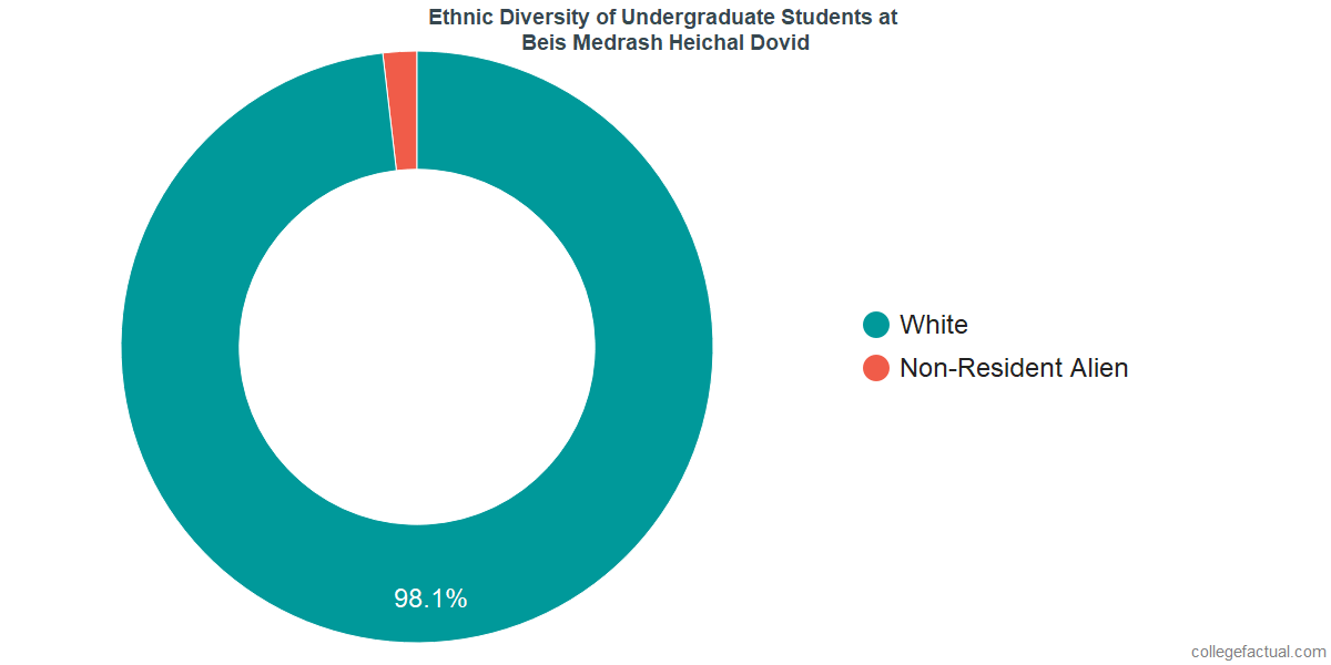 Ethnic Diversity of Undergraduates at Beis Medrash Heichal Dovid