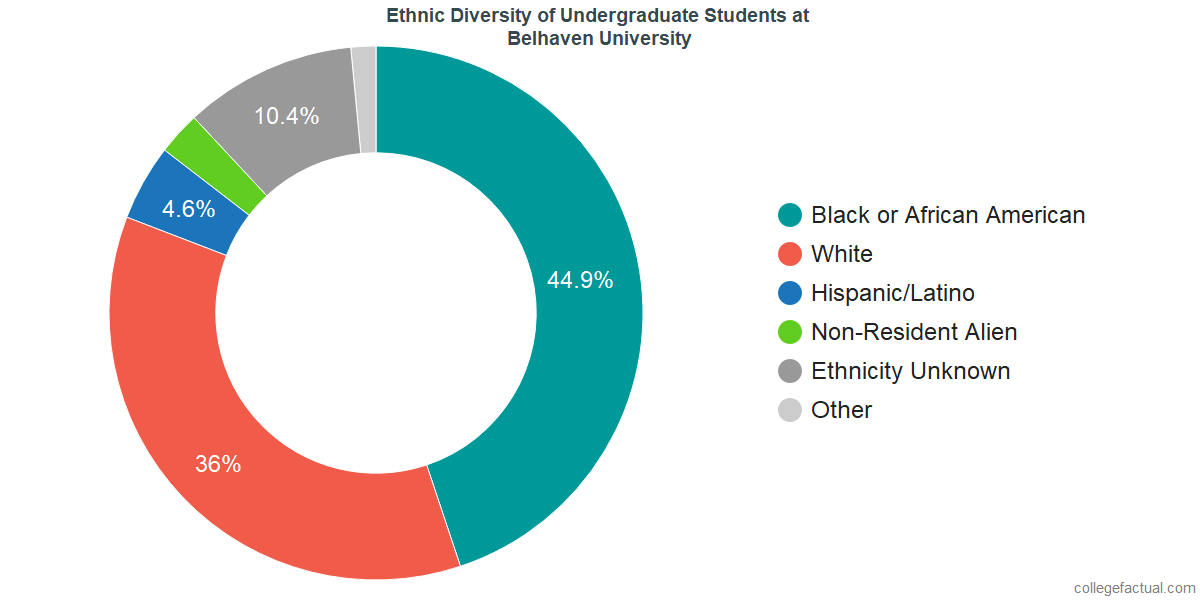 Undergraduate Ethnic Diversity at Belhaven University