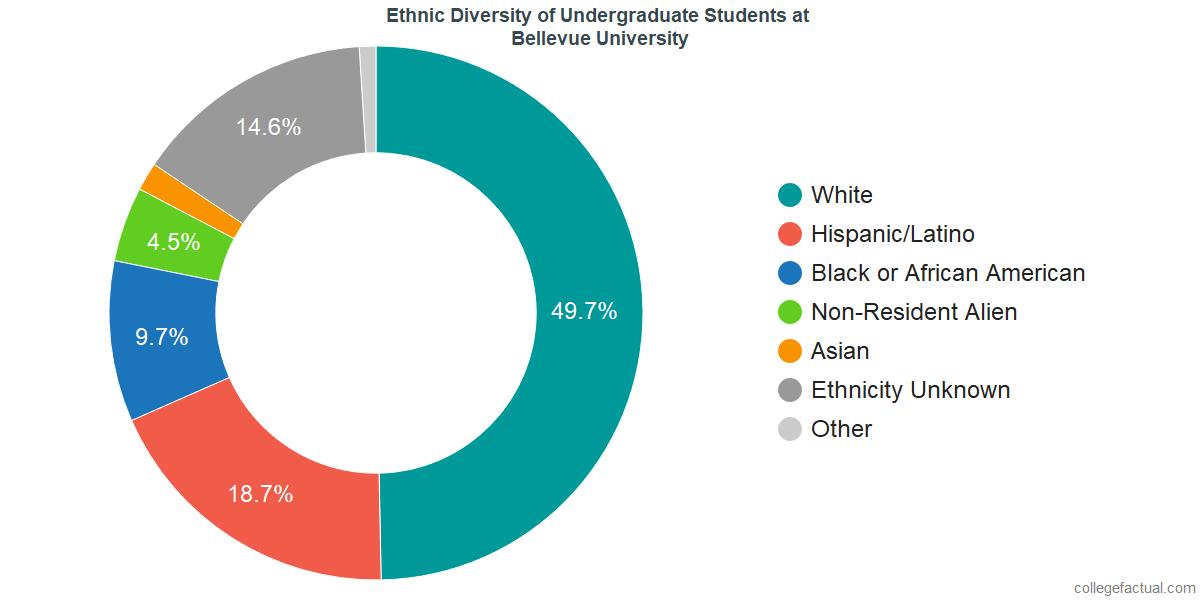 Undergraduate Ethnic Diversity at Bellevue University