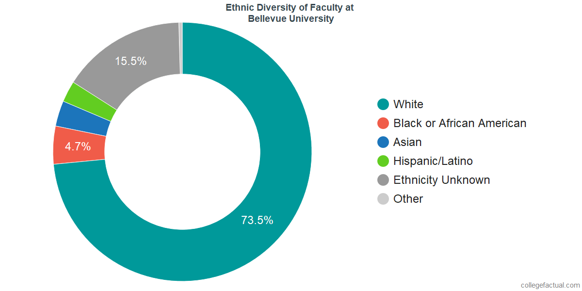 Ethnic Diversity of Faculty at Bellevue University
