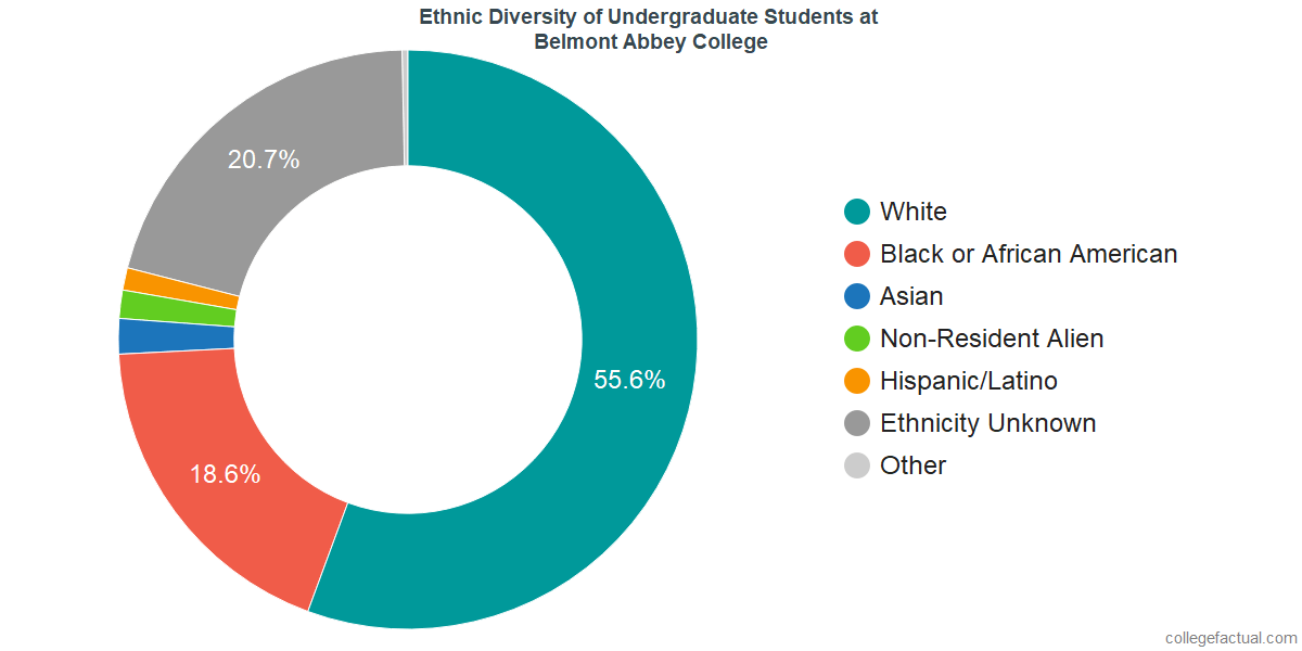 Ethnic Diversity of Undergraduates at Belmont Abbey College