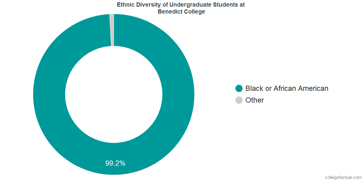 Ethnic Diversity of Undergraduates at Benedict College