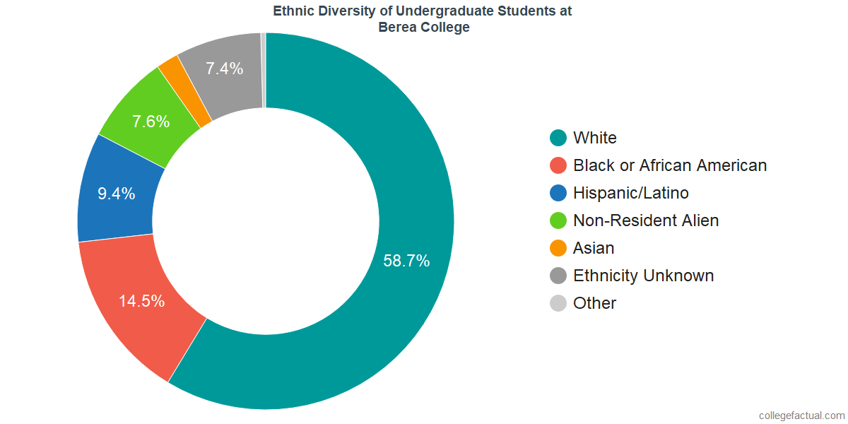 Ethnic Diversity of Undergraduates at Berea College