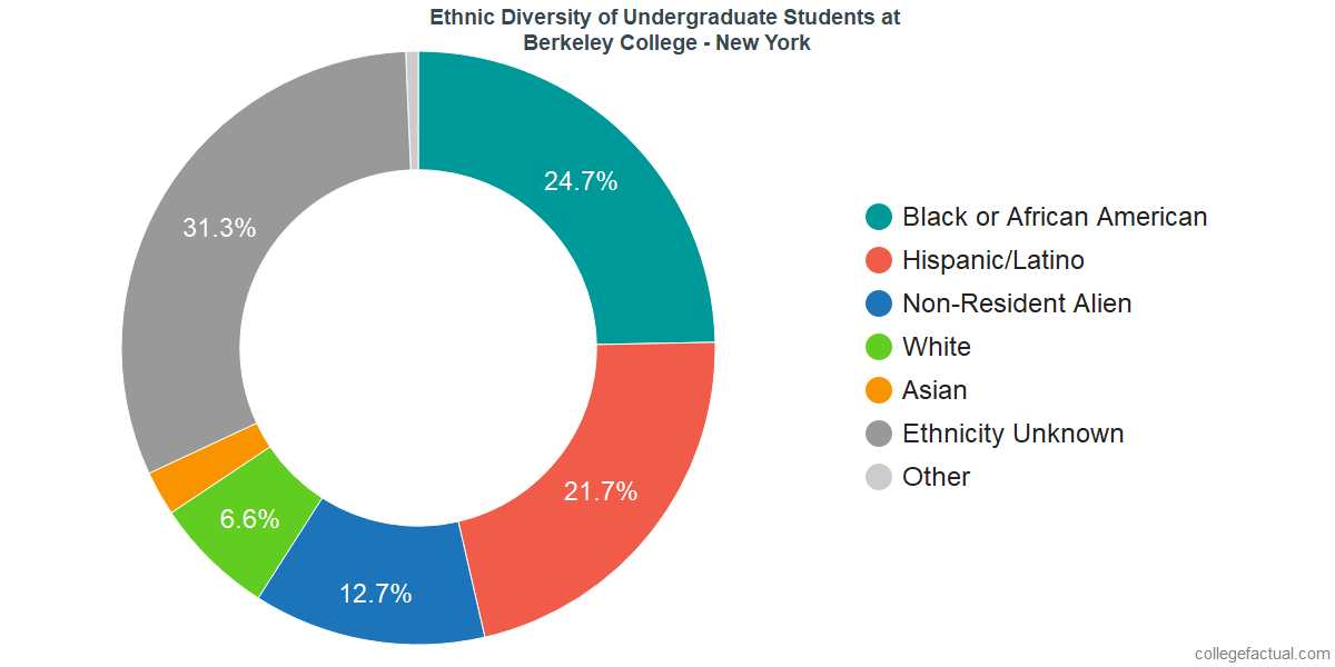 Ethnic Diversity of Undergraduates at Berkeley College - New York