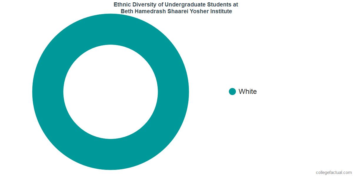 Ethnic Diversity of Undergraduates at Beth Hamedrash Shaarei Yosher Institute
