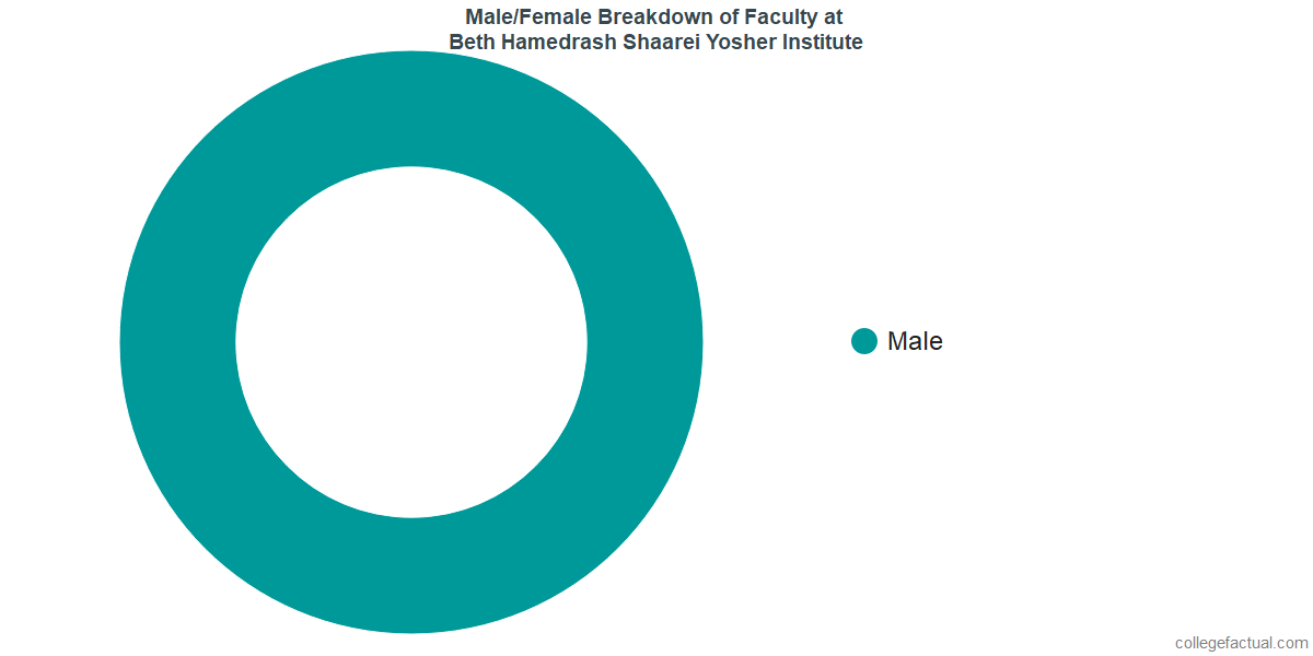 Male/Female Diversity of Faculty at Beth Hamedrash Shaarei Yosher Institute