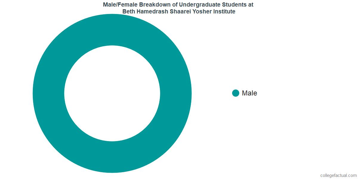 Male/Female Diversity of Undergraduates at Beth Hamedrash Shaarei Yosher Institute