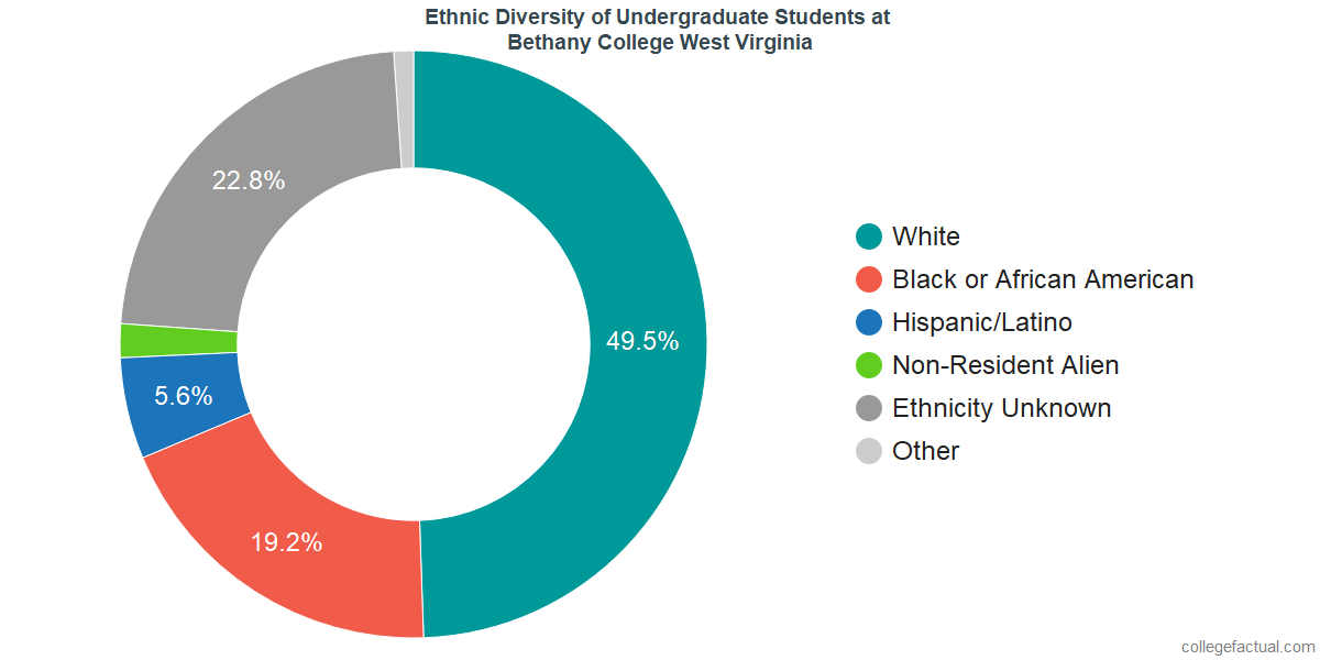 Ethnic Diversity of Undergraduates at Bethany College West Virginia