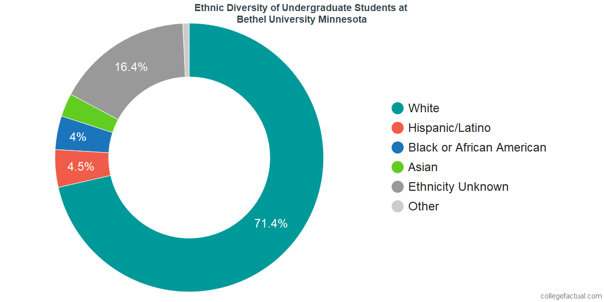 Ethnic Diversity of Undergraduates at Bethel University Minnesota