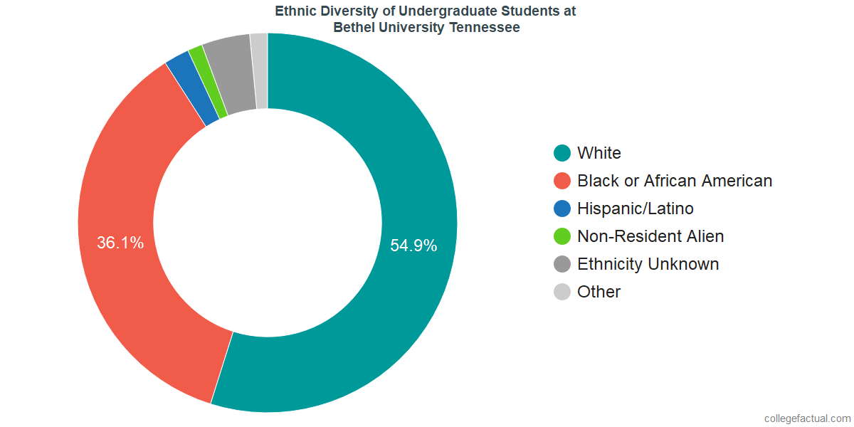 Ethnic Diversity of Undergraduates at Bethel University