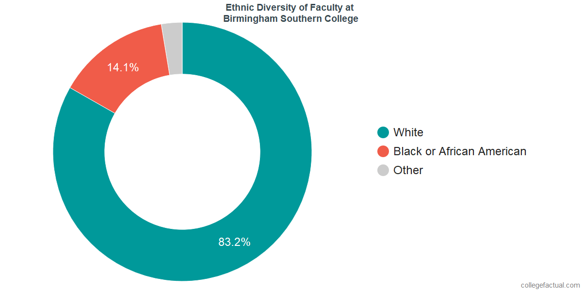 Ethnic Diversity of Faculty at Birmingham Southern College