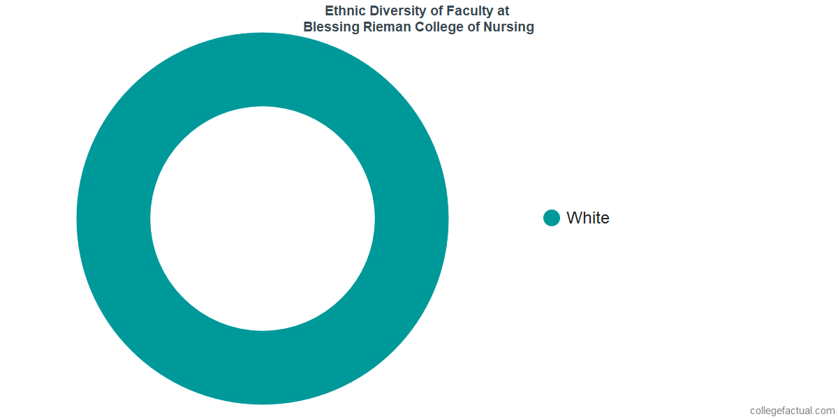 Ethnic Diversity of Faculty at Blessing Rieman College of Nursing