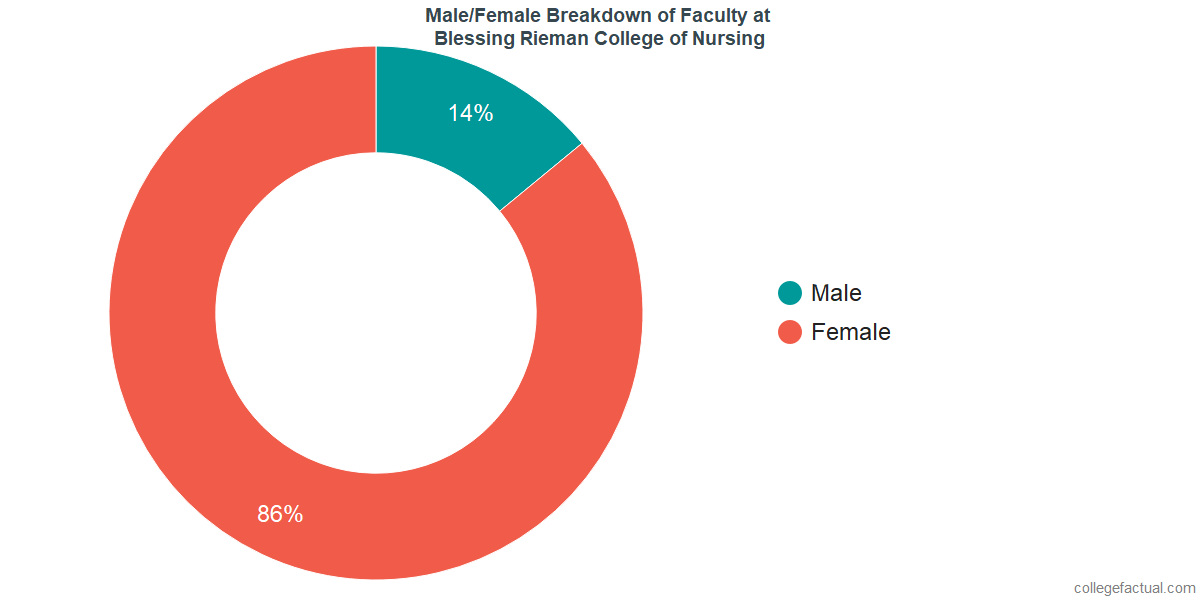 Male/Female Diversity of Faculty at Blessing Rieman College of Nursing